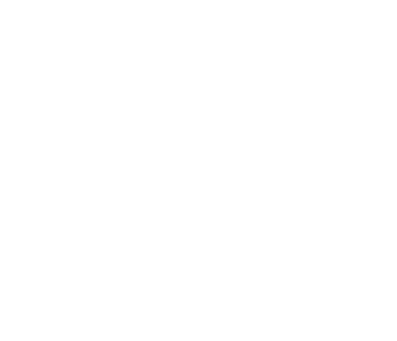 Lifetime guarantee white.png
